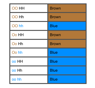 OCA2 HERC2 phenotypes